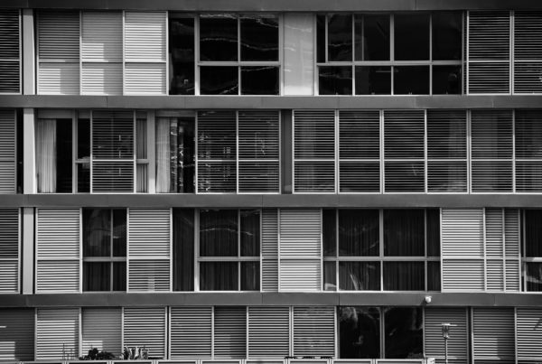Black and White Windows