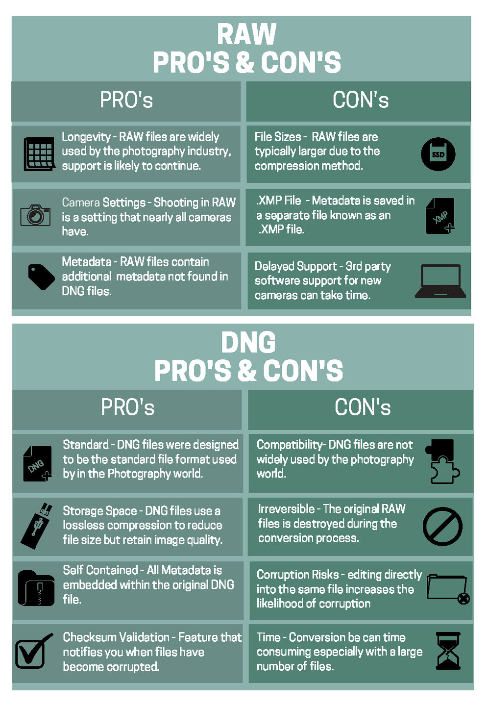RAW vs DNG PRO's and CON's