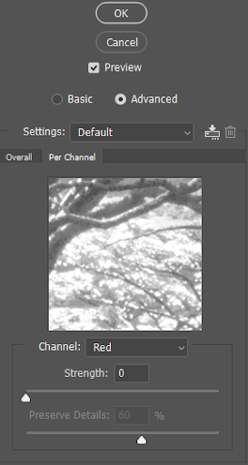 Reduce Noise Filter - Advanced Settings Panel