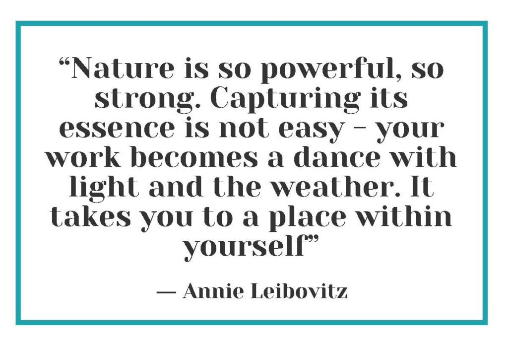 """""""Nature is so powerful, so strong. Capturing its essence is not easy - your work becomes a dance with light and the weather. It takes you to a place within yourself."""" ― Annie Leibovitz"""