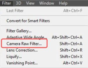 Filter Tab - Camera Raw Location