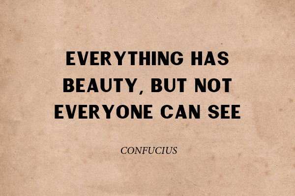 """""""Everything has beauty, but not everyone can see"""" - Confucius"""