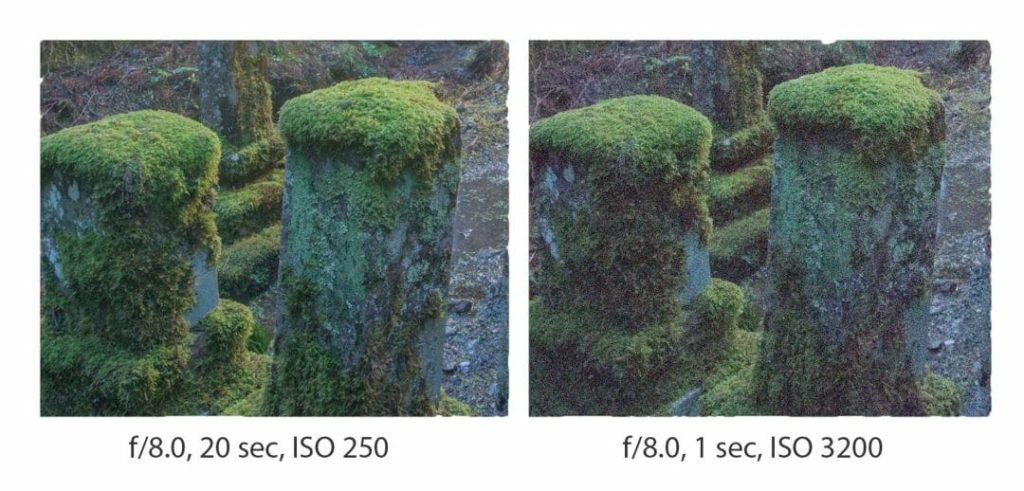 ISO and noise example image